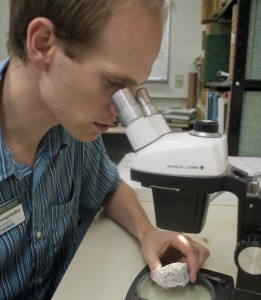 Klompmaker examines fossils of ancient crustaceans at the Florida Museum that may hold answers about the future of modern species. Florida Museum of Natural History photo by Jeff Gage